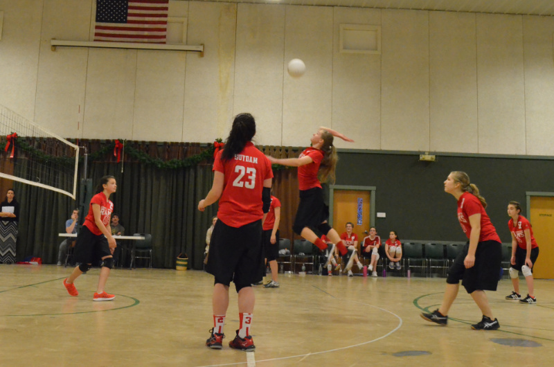 Volleyball Sports Program